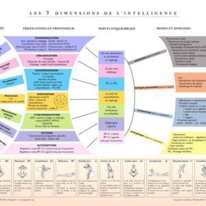 """Affiche A2 """"Les 7 dimensions de l'intelligence"""""""
